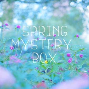 Spring mystery box 10 items